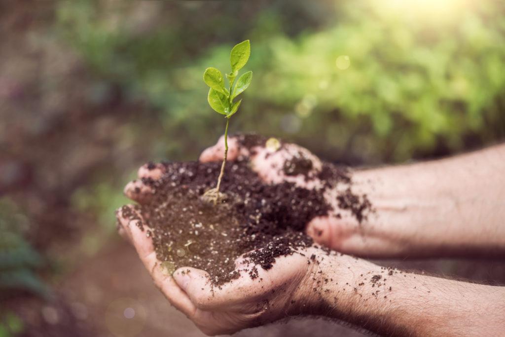 mieszanie środków ochrony roślin