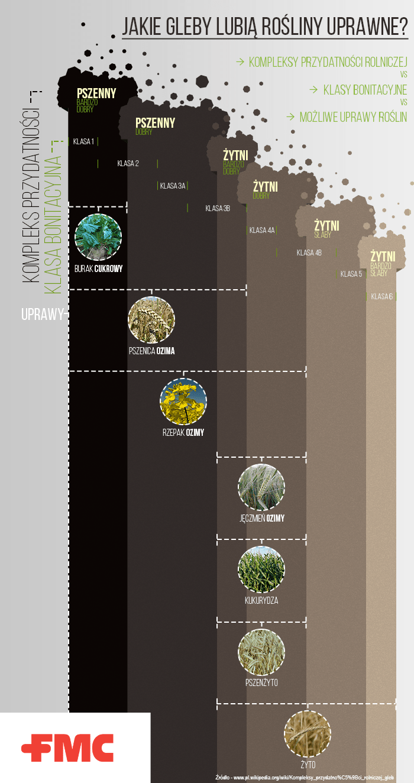 jakie gleby lubią zboża - podzial gleb i upraw