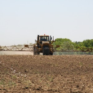 bezpieczeństwo stosowania środków ochrony roślin