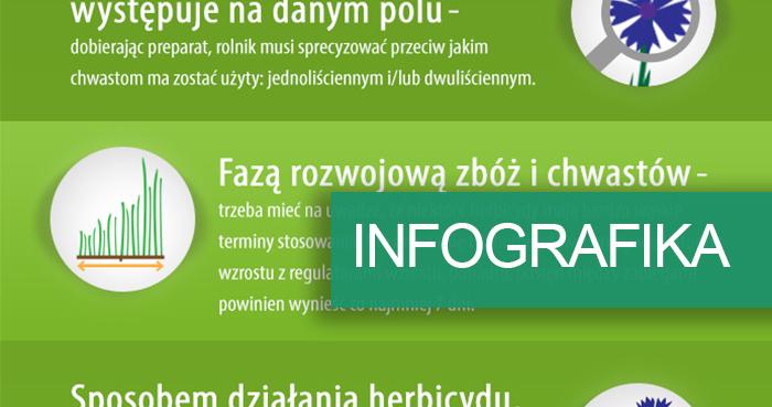 inforgrafika-środki chwastobójcze - jak wybrać