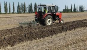 Przygotowanie gleby do jesieni