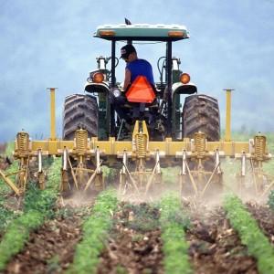 środki ochrony roślin szkolenie