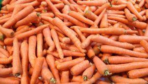 zdolność przechowalnicza warzyw