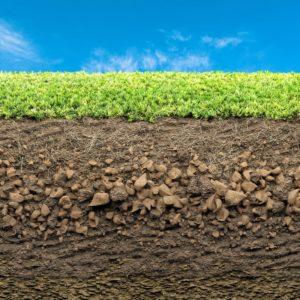 gleba-zakwaszenie