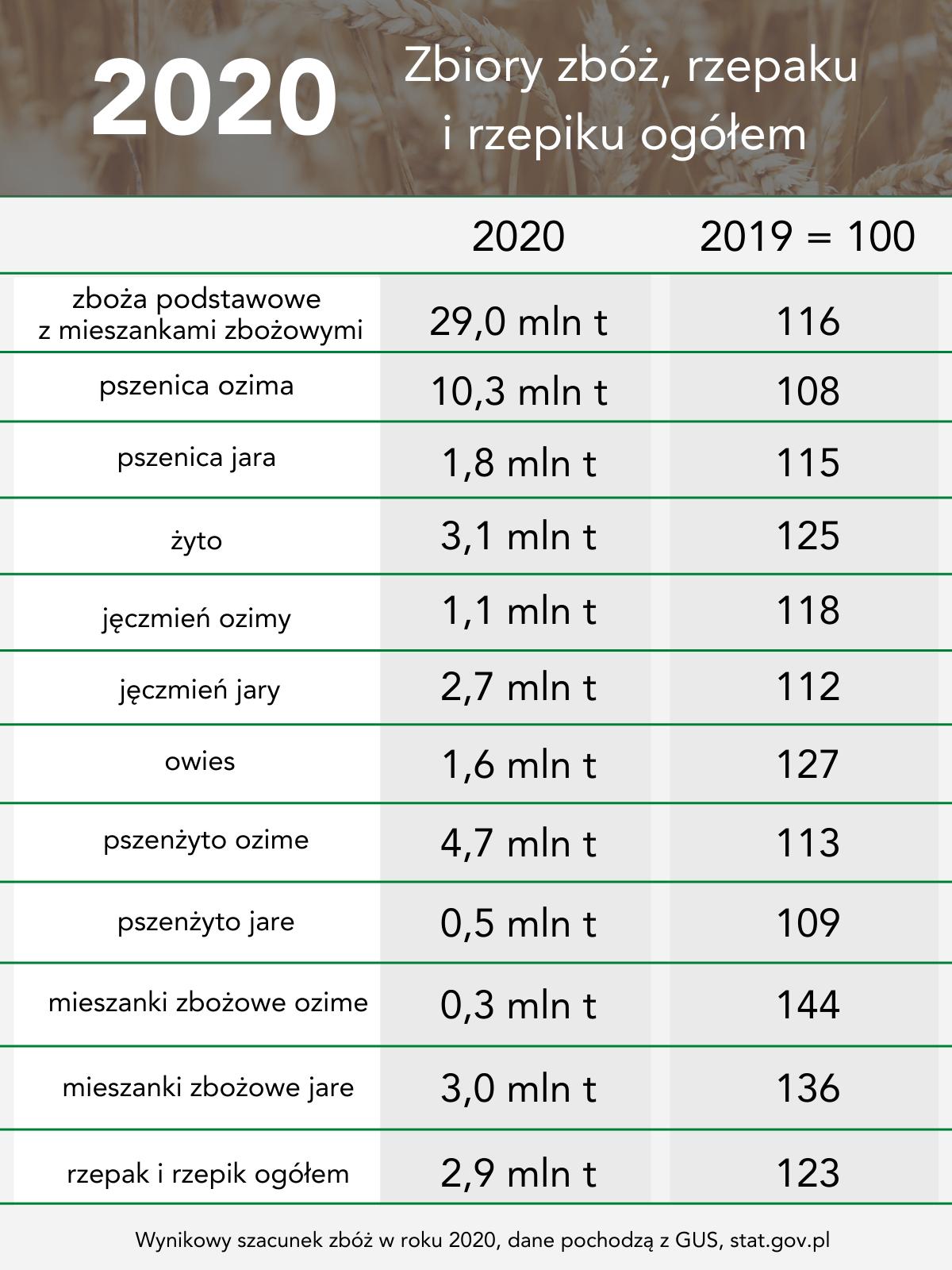 Tabela przedstawiająca wyniki zbiorów zbóż w roku 2020 i porównanie z rokiem 2019